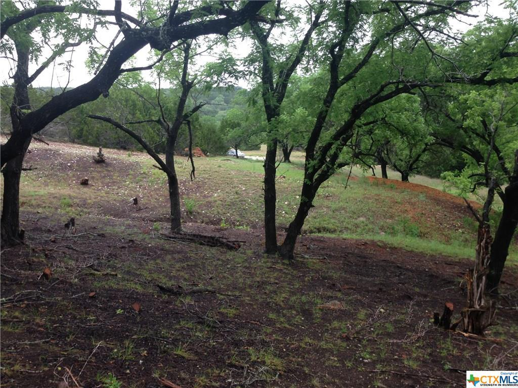 Active   TBD Saddle Ridge  Drive Bertram, TX 78605 1