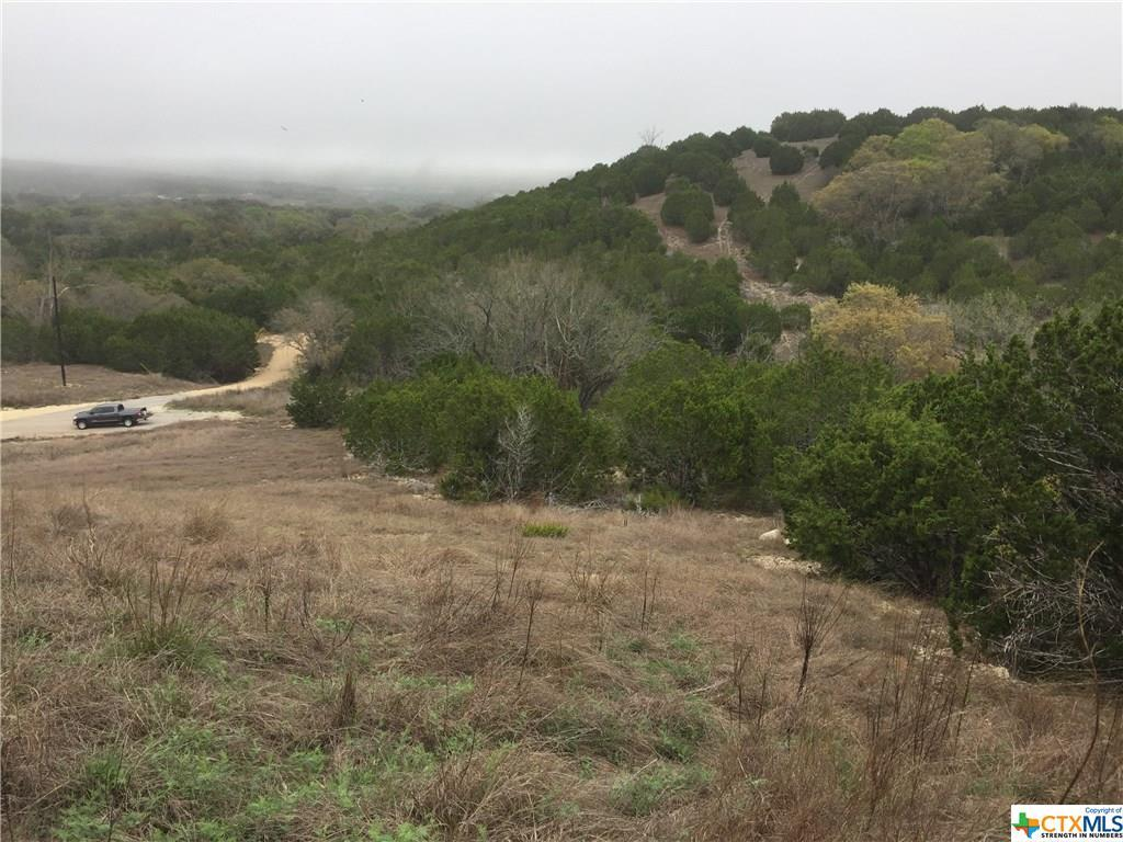 Active   TBD Saddle Ridge  Drive Bertram, TX 78605 2
