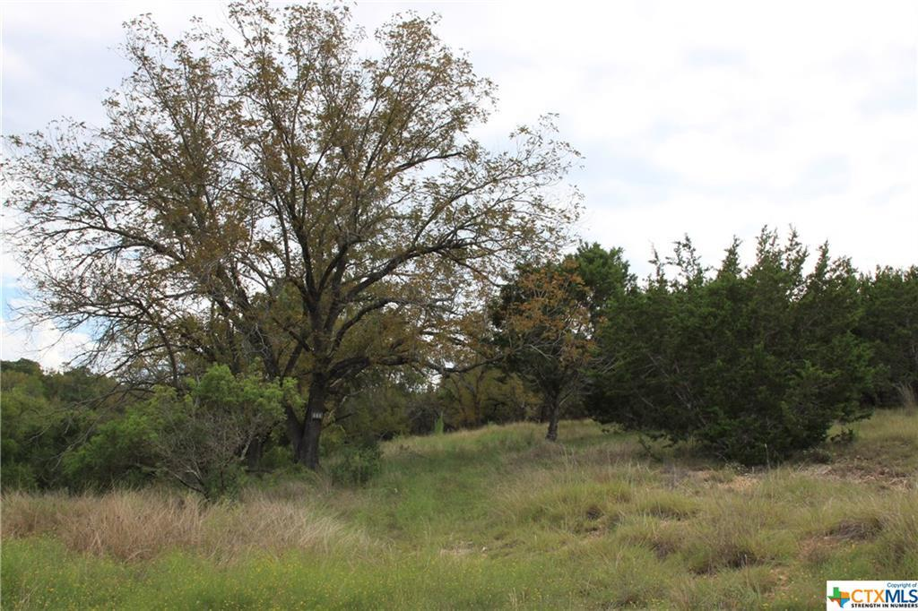 Active   TBD Saddle Ridge  Drive Bertram, TX 78605 11