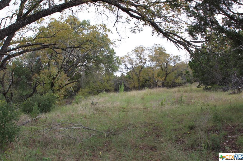 Active   TBD Saddle Ridge  Drive Bertram, TX 78605 13
