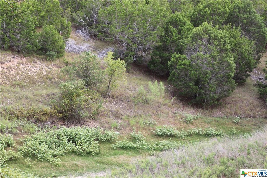 Active   TBD Saddle Ridge  Drive Bertram, TX 78605 15