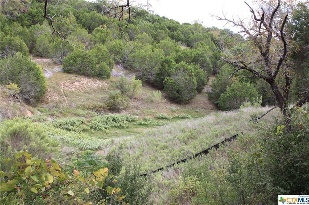 Active   TBD Saddle Ridge  Drive Bertram, TX 78605 16