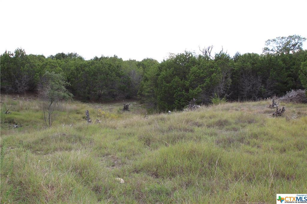 Active   TBD Saddle Ridge  Drive Bertram, TX 78605 17