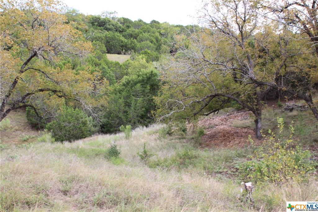 Active   TBD Saddle Ridge  Drive Bertram, TX 78605 18