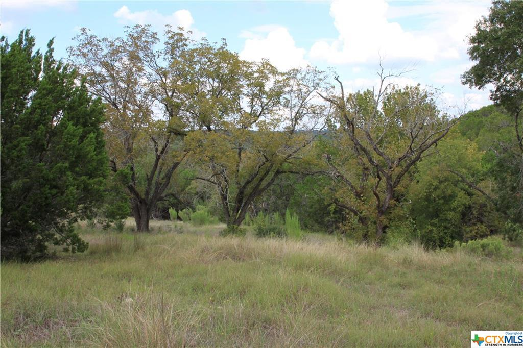Active   TBD Saddle Ridge  Drive Bertram, TX 78605 19