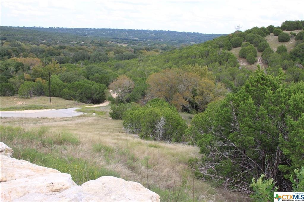 Active   TBD Saddle Ridge  Drive Bertram, TX 78605 3