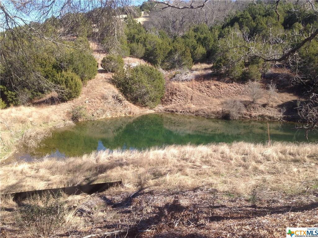 Active   TBD Saddle Ridge  Drive Bertram, TX 78605 21