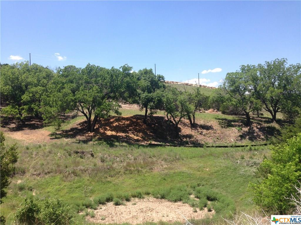 Active   TBD Saddle Ridge  Drive Bertram, TX 78605 23