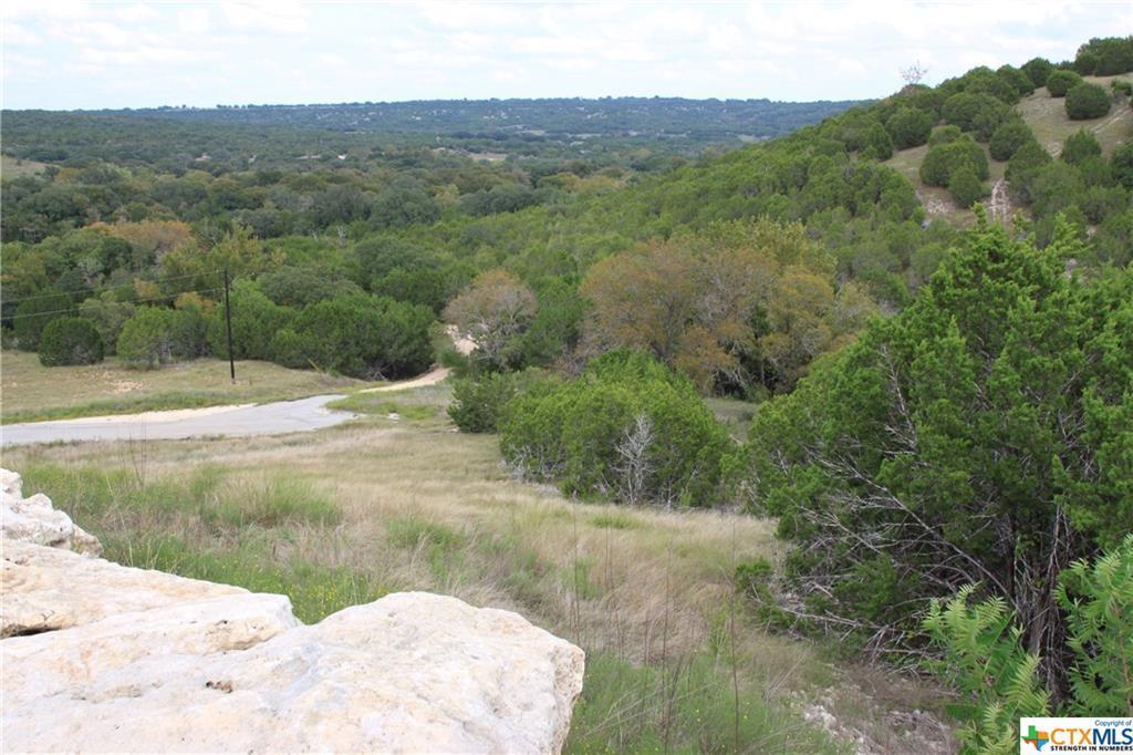 Active   TBD Saddle Ridge  Drive Bertram, TX 78605 4
