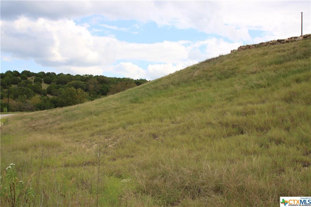 Active   TBD Saddle Ridge  Drive Bertram, TX 78605 8