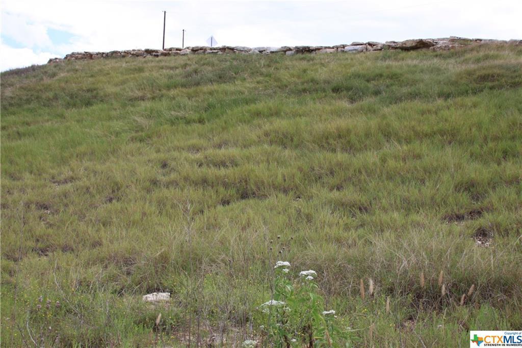 Active   TBD Saddle Ridge  Drive Bertram, TX 78605 9
