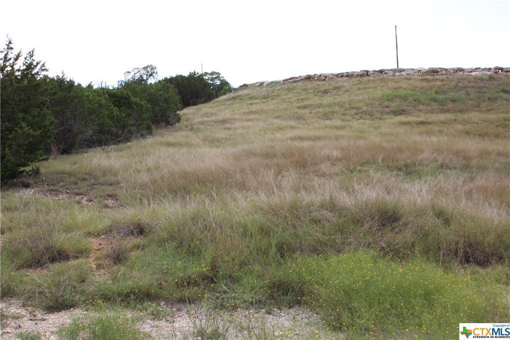 Active   TBD Saddle Ridge  Drive Bertram, TX 78605 10