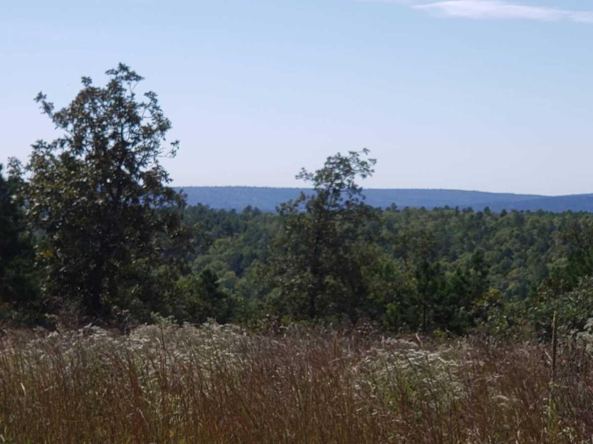 land, ranch, recreational, hunting, oklahoma, cabin | Flag Pole Mountain Rd Clayton, OK 74536 0