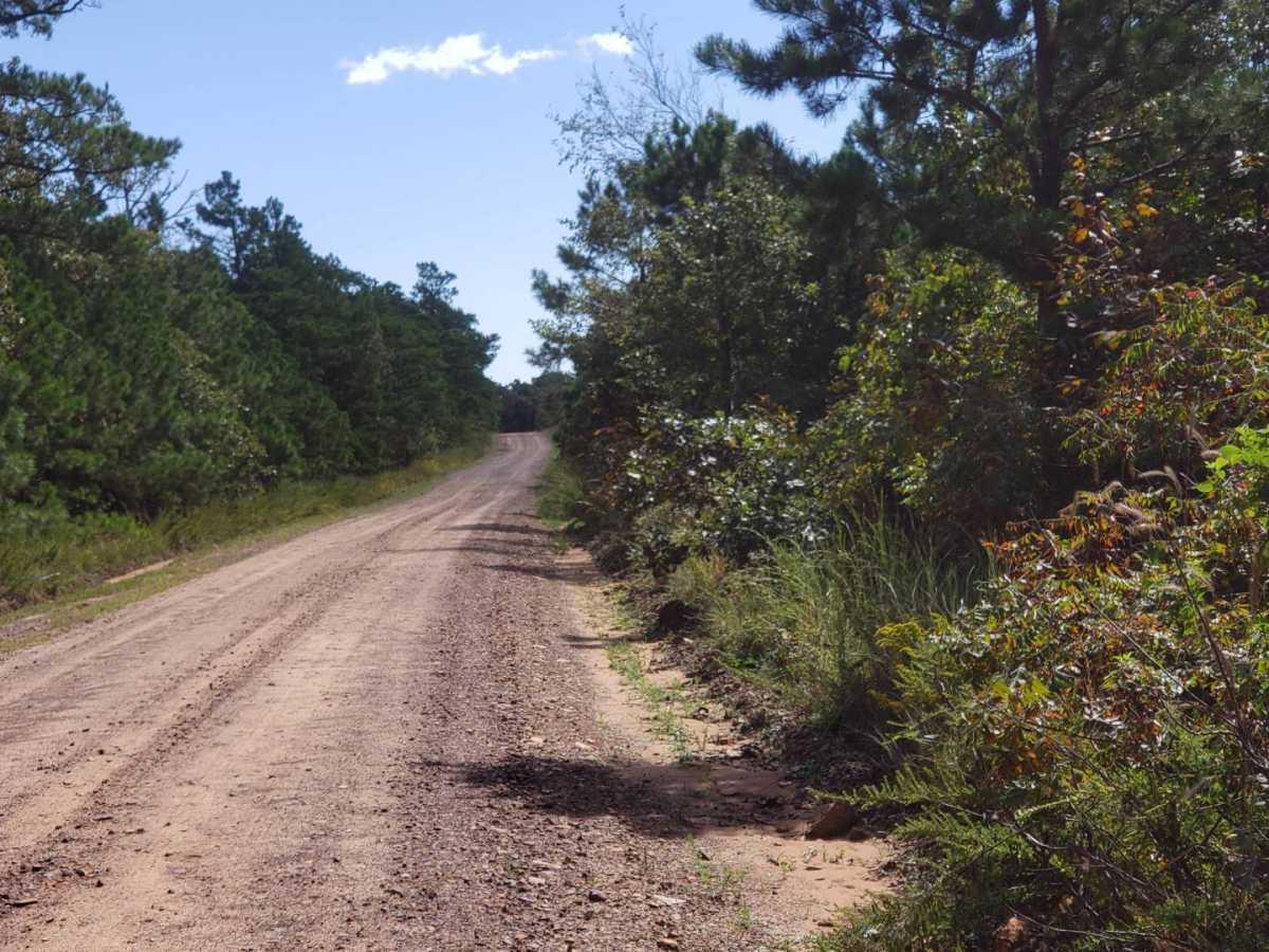 land, ranch, recreational, hunting, oklahoma, cabin | Flag Pole Mountain Rd Clayton, OK 74536 14