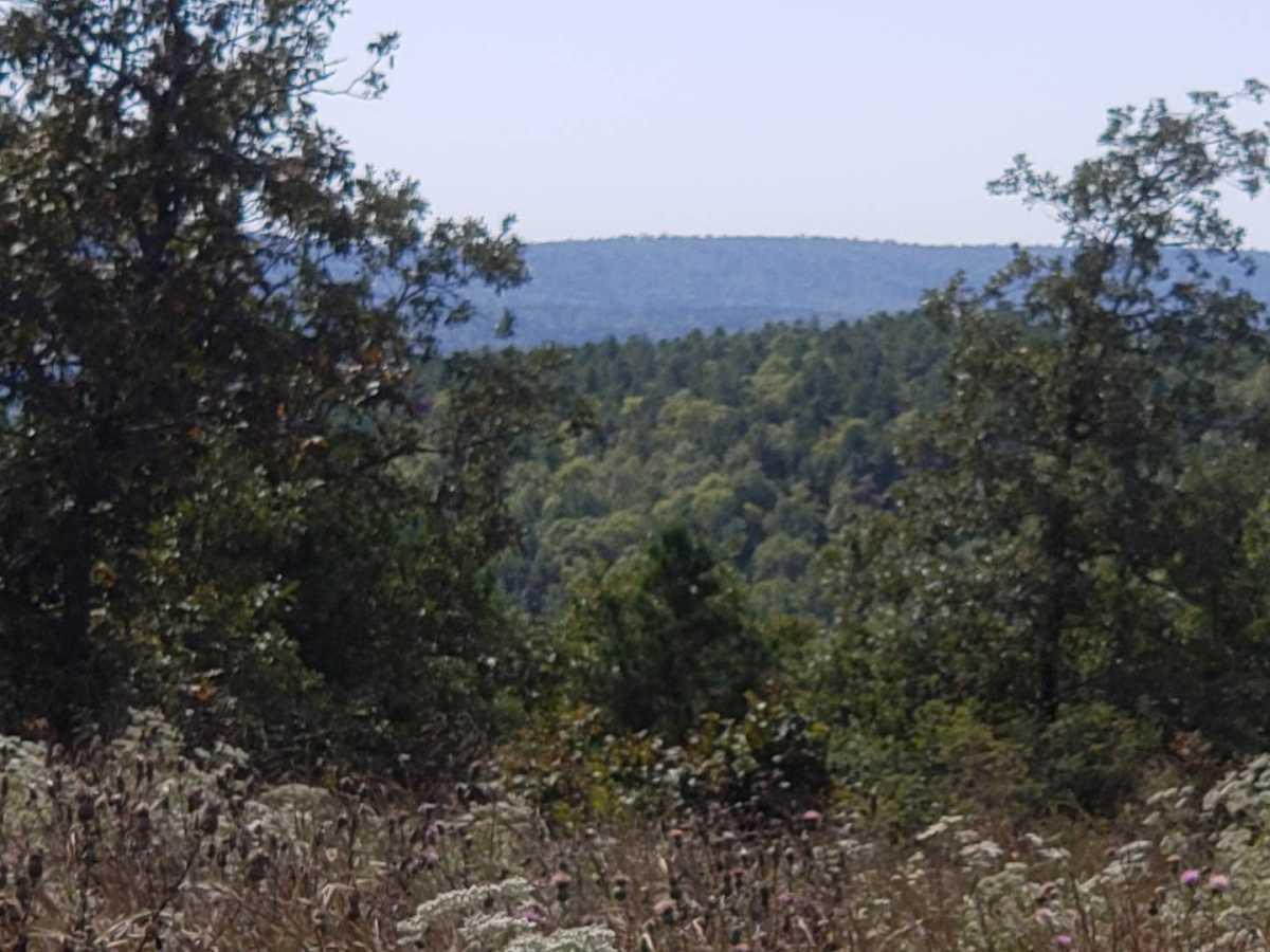 land, ranch, recreational, hunting, oklahoma, cabin | Flag Pole Mountain Rd Clayton, OK 74536 4