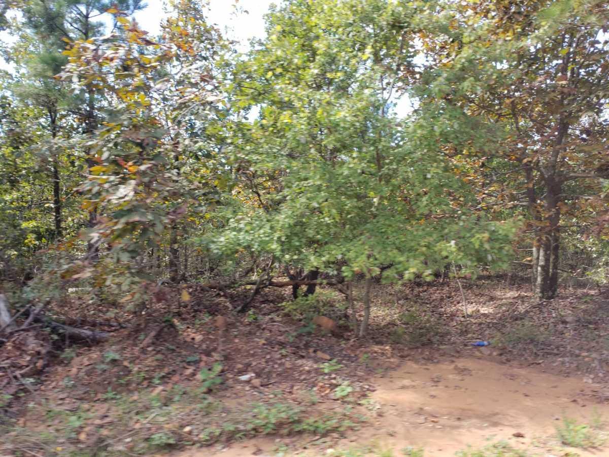 land, ranch, recreational, hunting, oklahoma, cabin | Flag Pole Mountain Rd Clayton, OK 74536 10