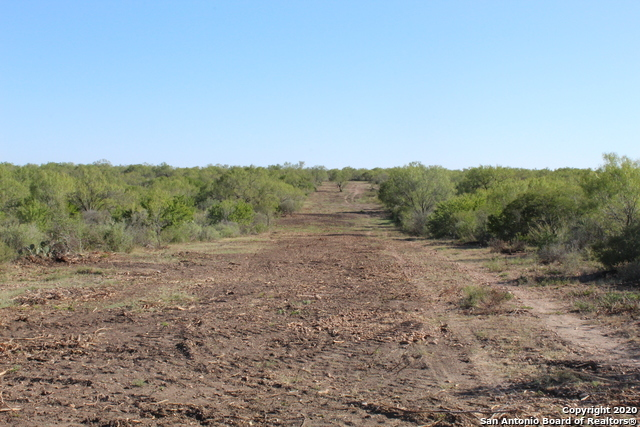 New | 631 Lilly Bear Lane - Tract 16 Moore, TX 78057 1