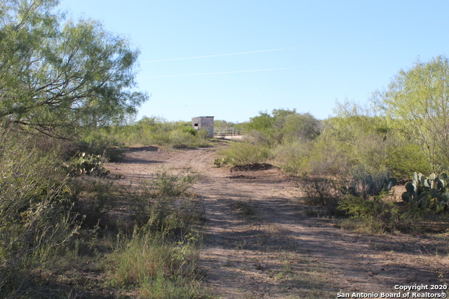 New | 631 Lilly Bear Lane - Tract 16 Moore, TX 78057 15