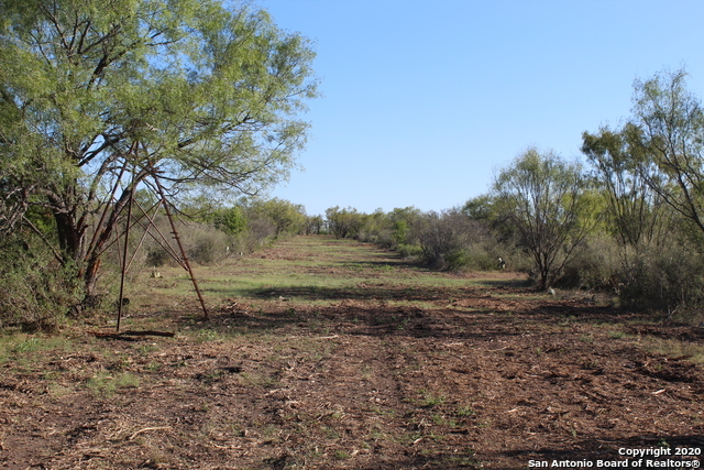 New | 631 Lilly Bear Lane - Tract 16 Moore, TX 78057 17