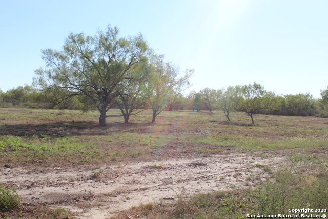 New | 631 Lilly Bear Lane - Tract 16 Moore, TX 78057 9