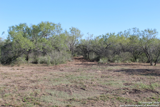 New | 631 Lilly Bear Lane - Tract 16 Moore, TX 78057 10