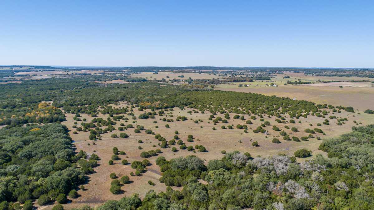 Hunting, Ranch, Ponds, Cattle, Horses | 2517 County Road 2600 Lometa, TX 76853 50