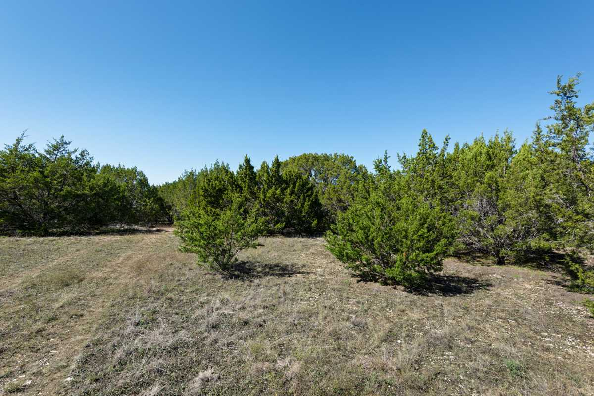 Hunting, Ranch, Ponds, Cattle, Horses | 2517 County Road 2600 Lometa, TX 76853 52