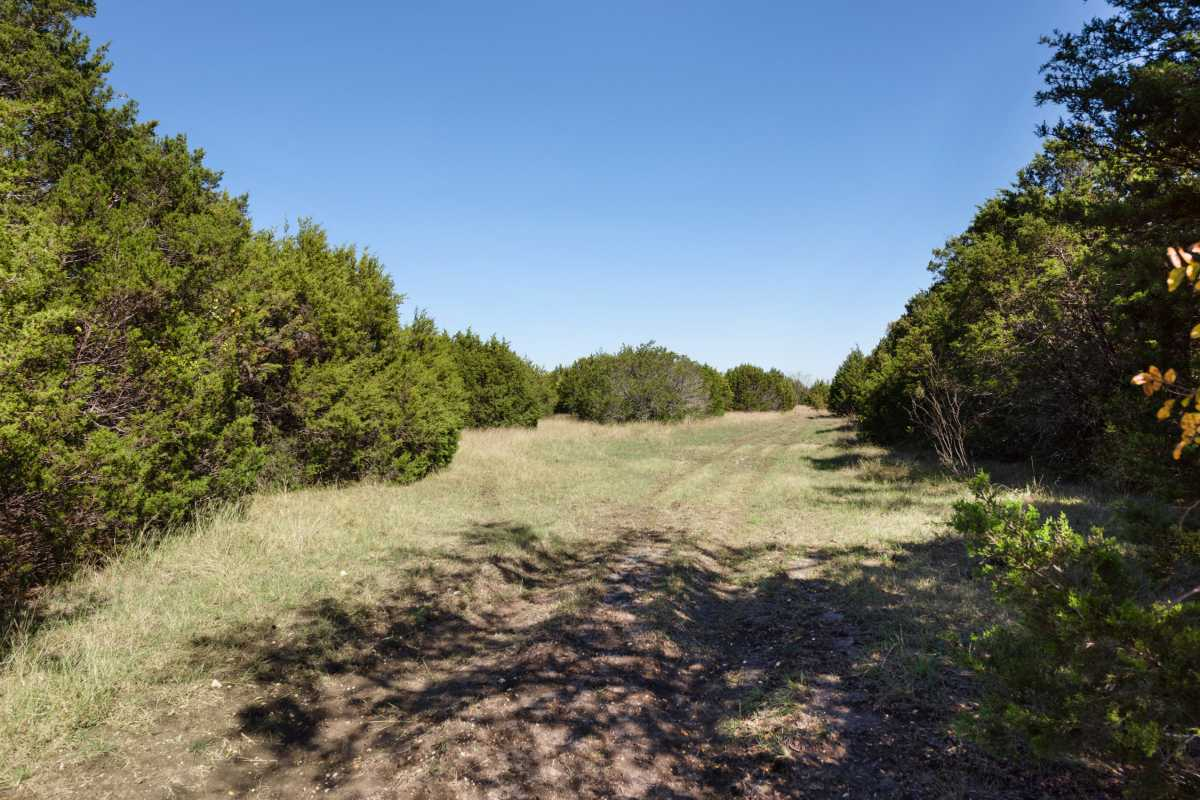 Hunting, Ranch, Ponds, Cattle, Horses | 2517 County Road 2600 Lometa, TX 76853 31