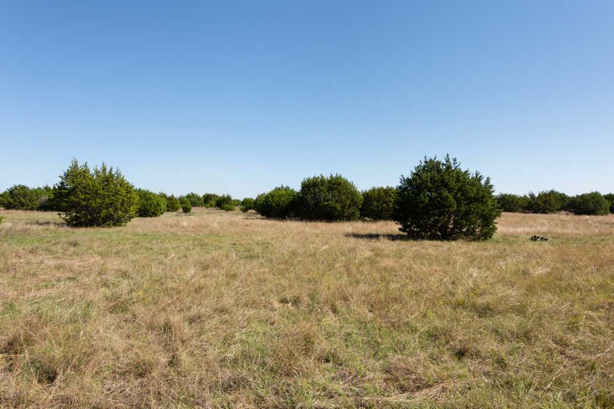 Hunting, Ranch, Ponds, Cattle, Horses | 2517 County Road 2600 Lometa, TX 76853 75