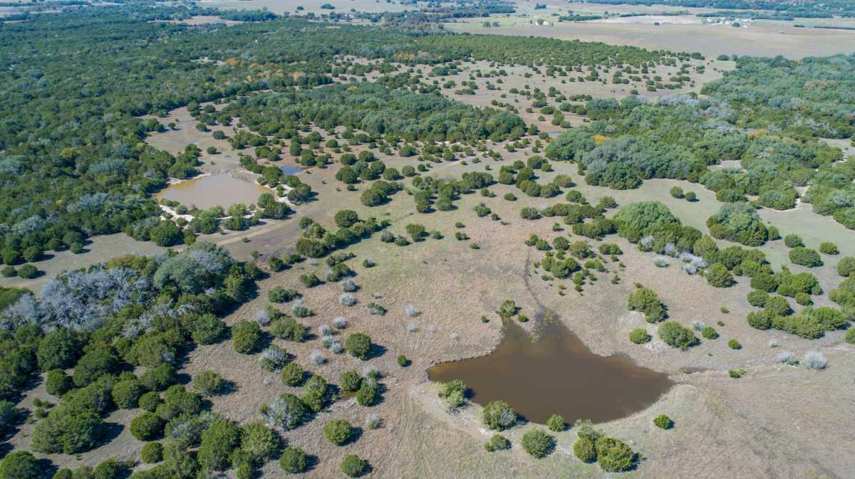 Hunting, Ranch, Ponds, Cattle, Horses | 2517 County Road 2600 Lometa, TX 76853 96