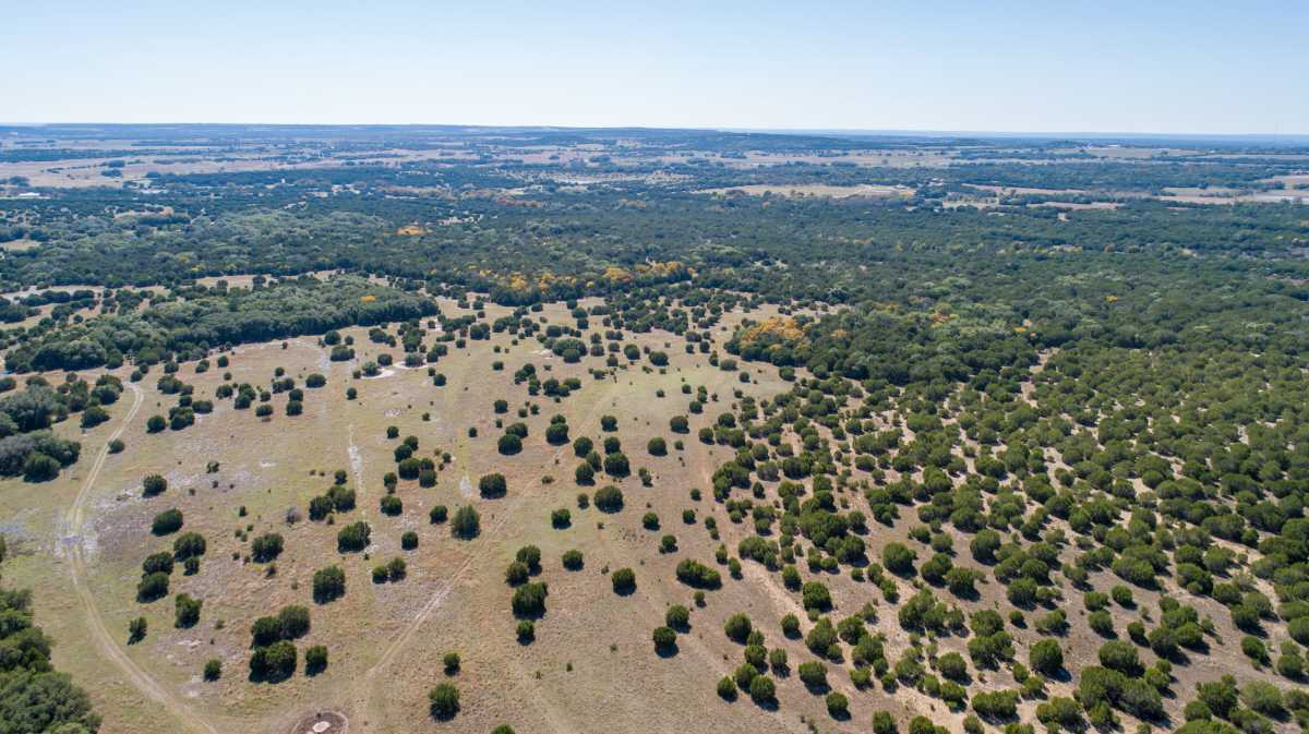 Hunting, Ranch, Ponds, Cattle, Horses | 2517 County Road 2600 Lometa, TX 76853 54