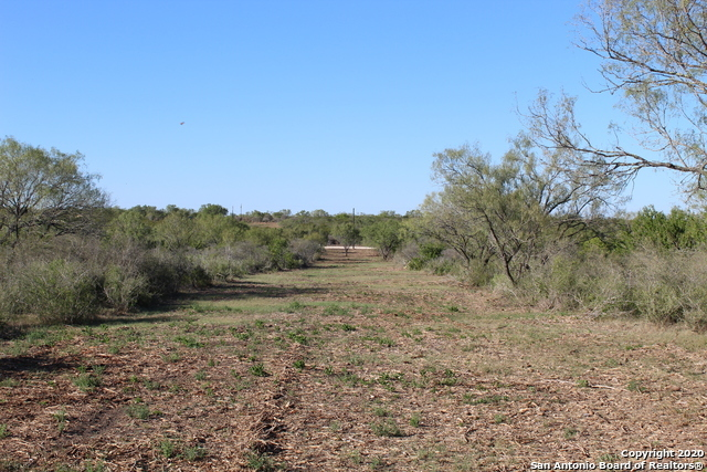 Active Option | 1028 Lilly Bear Lane - Tract 7 Moore, TX 78057 2
