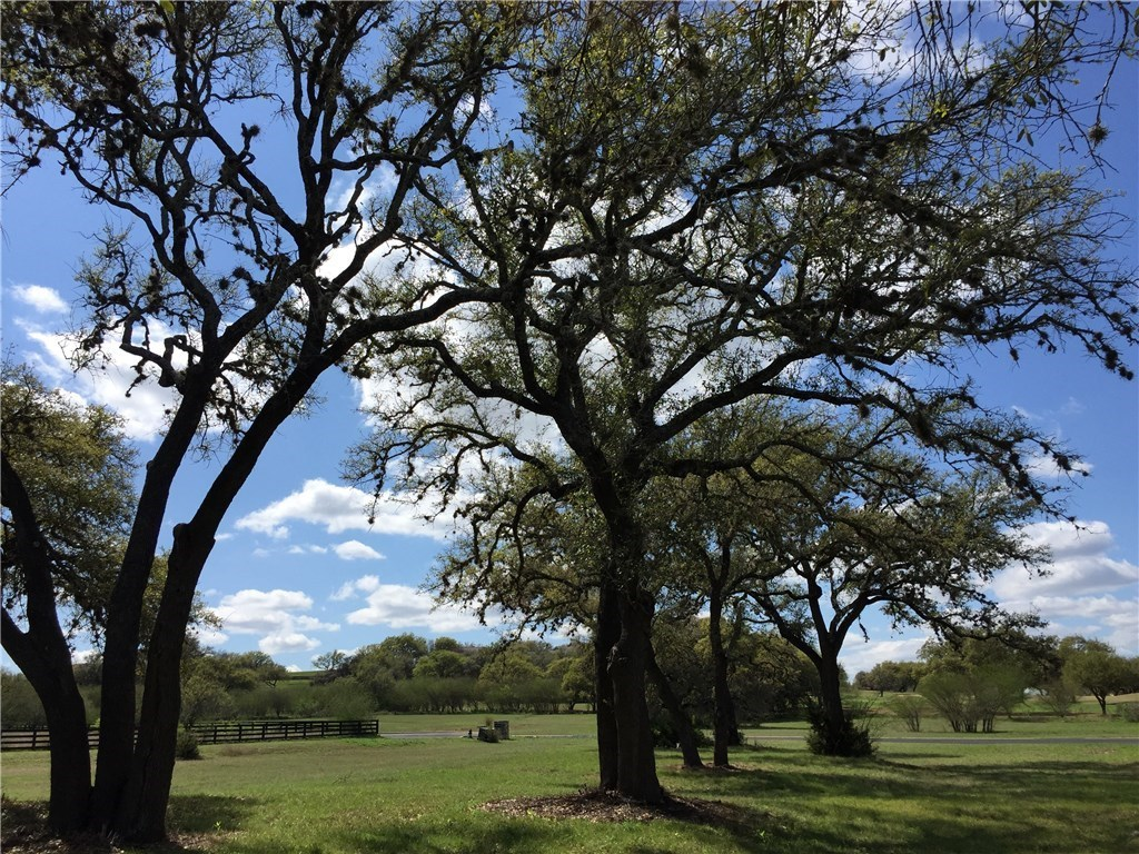 Sold Property | 26700 Woodpecker TRL Spicewood, TX 78669 5
